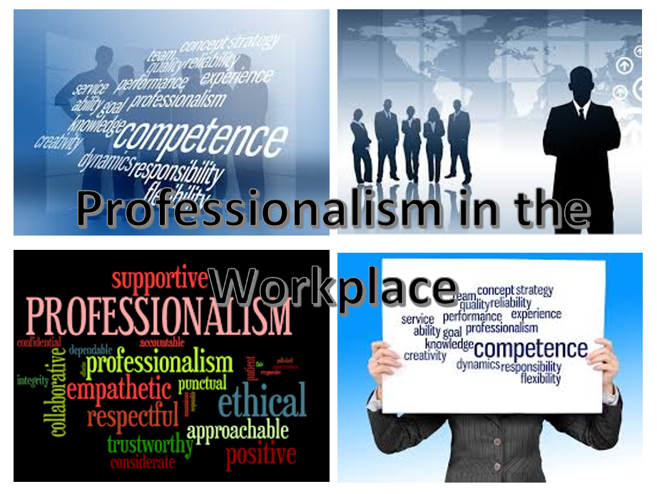 professionalism in the wordplace image 1